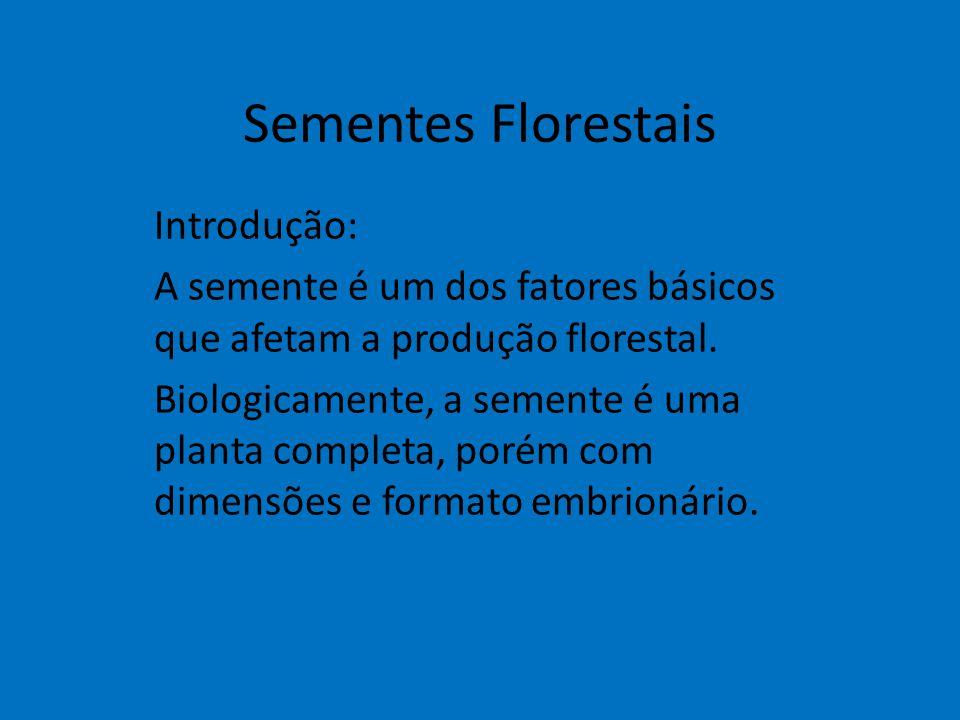 Sementes Florestais Introdução: A semente é um dos fatores básicos que afetam a produção florestal. Biologicamente, a semente é uma planta completa, p