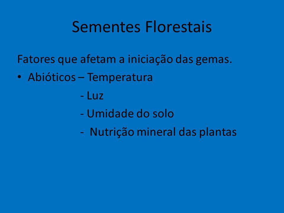 Sementes Florestais Fatores que afetam a iniciação das gemas. Abióticos – Temperatura - Luz - Umidade do solo - Nutrição mineral das plantas