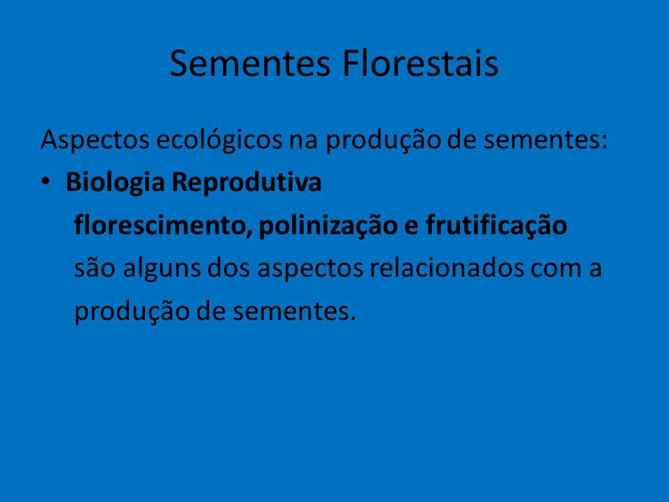 Sementes Florestais Aspectos ecológicos na produção de sementes: Biologia Reprodutiva florescimento, polinização e frutificação são alguns dos aspecto