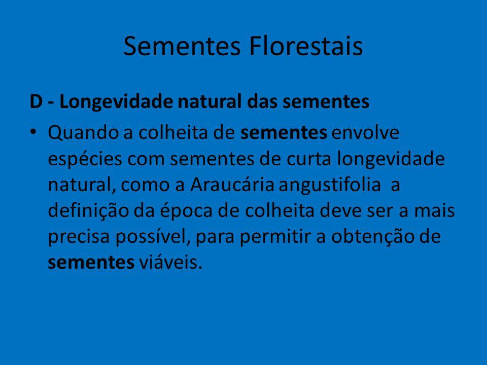 Sementes Florestais D - Longevidade natural das sementes Quando a colheita de sementes envolve espécies com sementes de curta longevidade natural, com