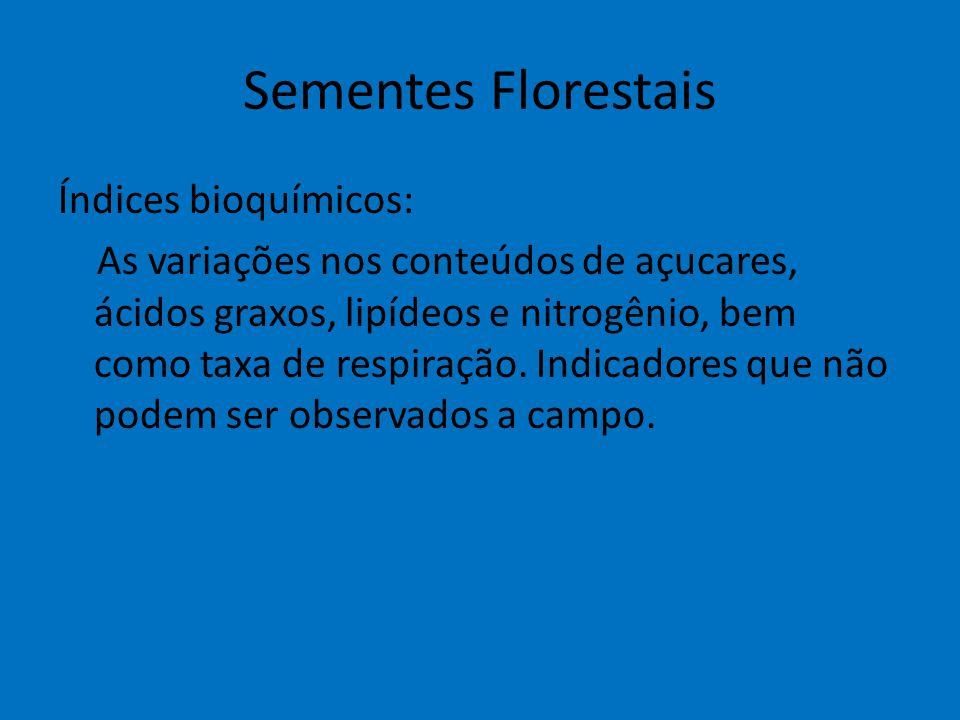 Sementes Florestais Índices bioquímicos: As variações nos conteúdos de açucares, ácidos graxos, lipídeos e nitrogênio, bem como taxa de respiração. In
