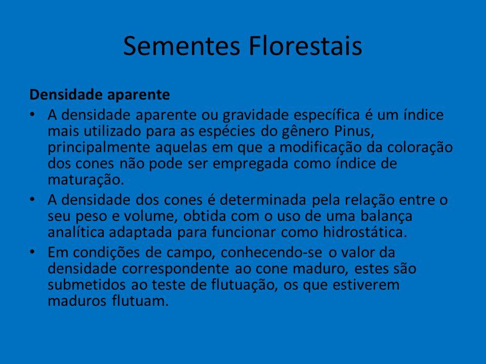 Sementes Florestais Densidade aparente A densidade aparente ou gravidade específica é um índice mais utilizado para as espécies do gênero Pinus, princ