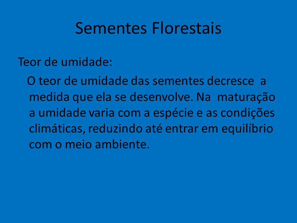 Sementes Florestais Teor de umidade: O teor de umidade das sementes decresce a medida que ela se desenvolve. Na maturação a umidade varia com a espéci