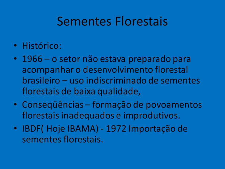 Sementes Florestais Histórico: 1966 – o setor não estava preparado para acompanhar o desenvolvimento florestal brasileiro – uso indiscriminado de seme