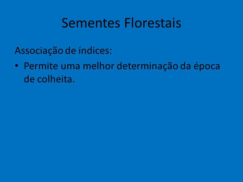 Sementes Florestais Associação de índices: Permite uma melhor determinação da época de colheita.
