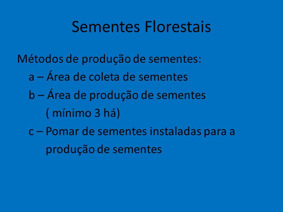 Sementes Florestais Métodos de produção de sementes: a – Área de coleta de sementes b – Área de produção de sementes ( mínimo 3 há) c – Pomar de semen