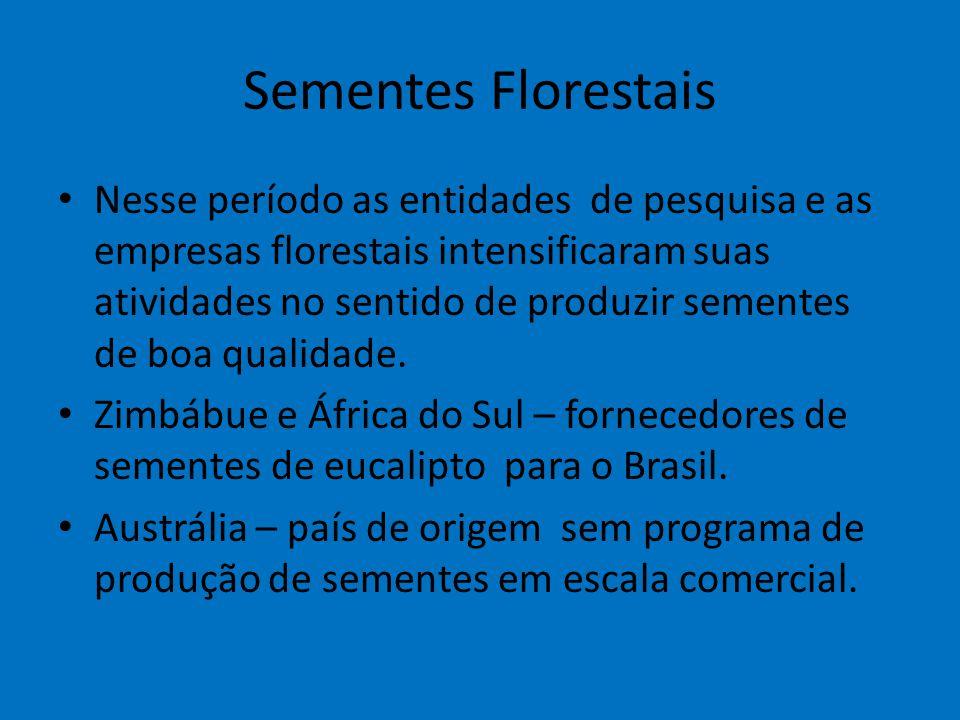 Sementes Florestais Nesse período as entidades de pesquisa e as empresas florestais intensificaram suas atividades no sentido de produzir sementes de