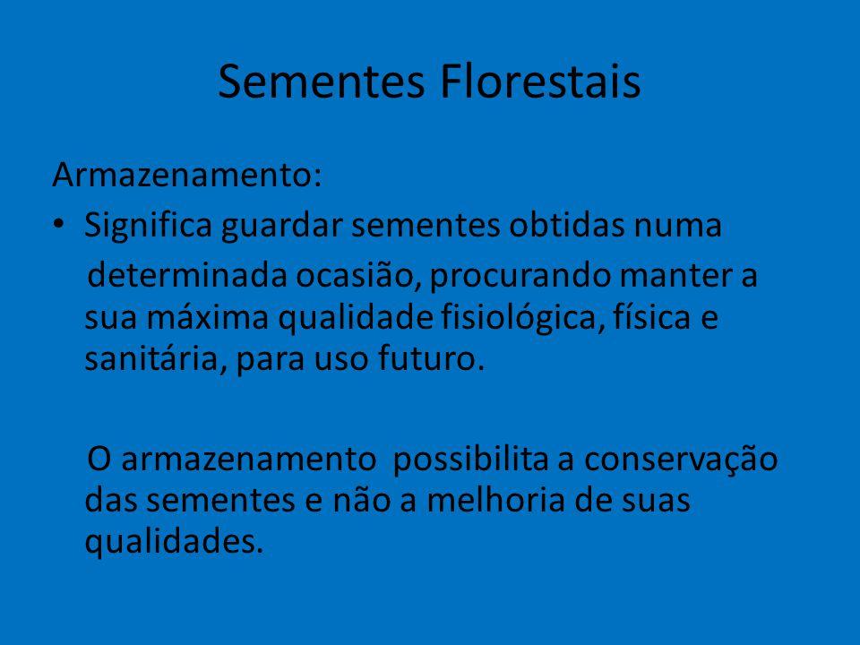 Sementes Florestais Armazenamento: Significa guardar sementes obtidas numa determinada ocasião, procurando manter a sua máxima qualidade fisiológica,
