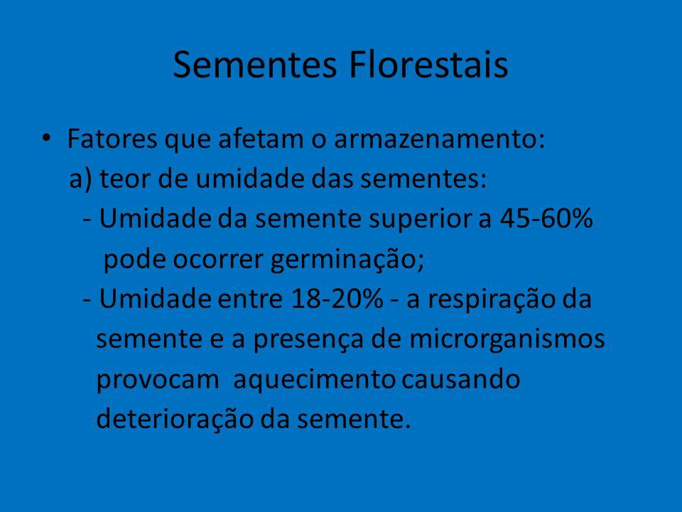 Sementes Florestais Fatores que afetam o armazenamento: a) teor de umidade das sementes: - Umidade da semente superior a 45-60% pode ocorrer germinaçã