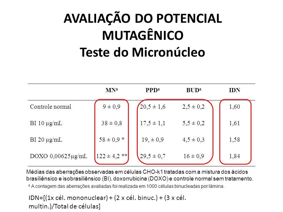 MN a PPD a BUD a IDN Controle normal9 ± 0,920,5 ± 1,62,5 ± 0,21,60 BI 10 µg/mL38 ± 0,817,5 ± 1,15,5 ± 0,21,61 BI 20 µg/mL58 ± 0,9 *19, ± 0,94,5 ± 0,31