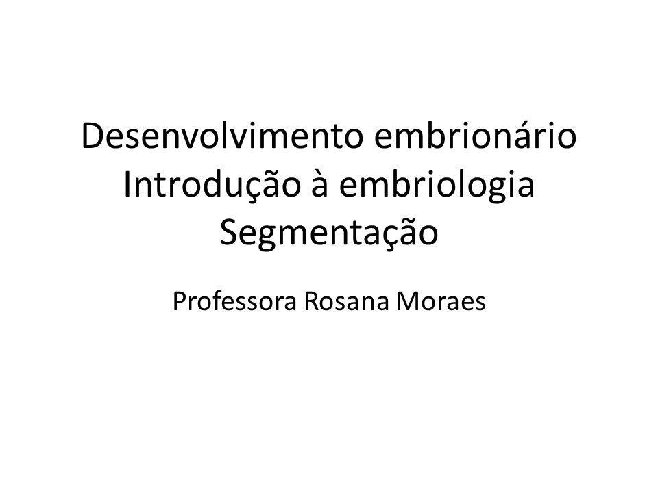 Desenvolvimento embrionário Introdução à embriologia Segmentação Professora Rosana Moraes