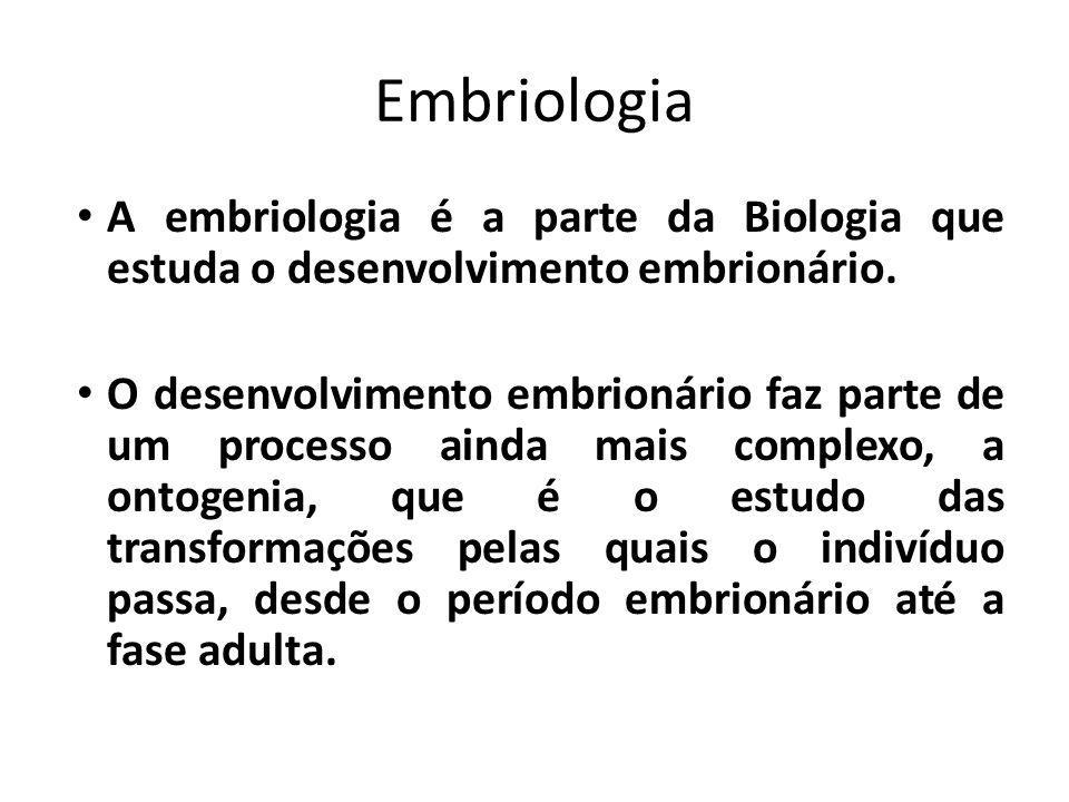 Embriologia A embriologia é a parte da Biologia que estuda o desenvolvimento embrionário.