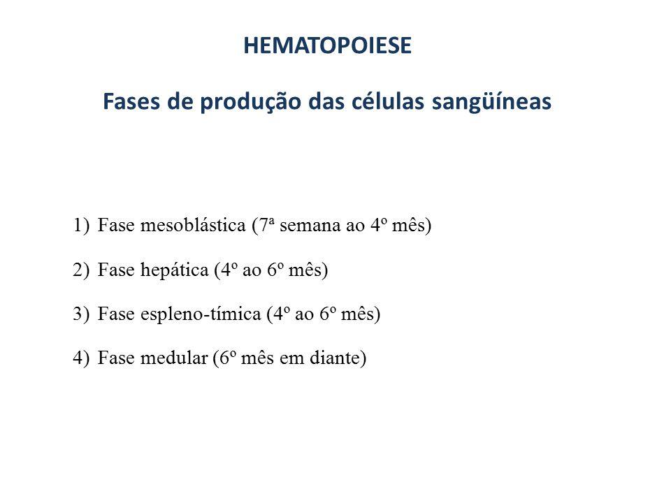 HEMATOPOESE EMBRIONÁRIA E FETAL