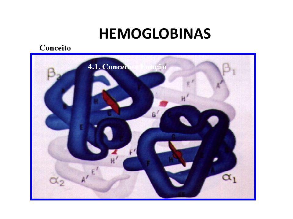 PROTEÍNAS DA MEMBRANA Actina Espectrina Anquirina Banda 3, Glicoforina A, Banda 4.1 Banda 4.2 G3PD Banda 7
