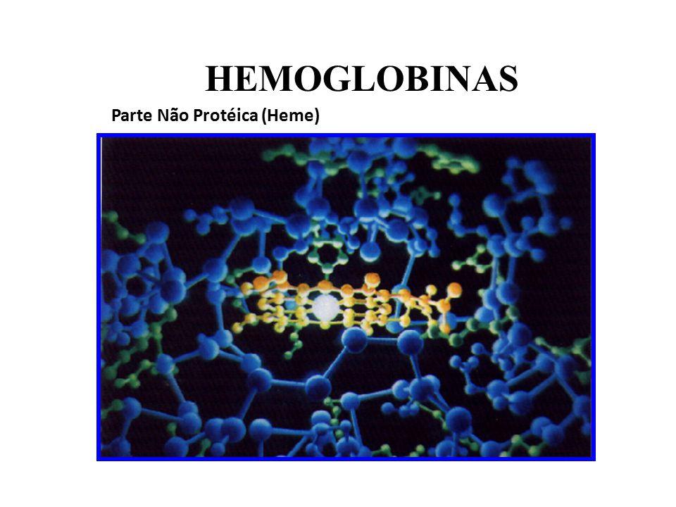 Estrutura Molecular HEMOGLOBINAS