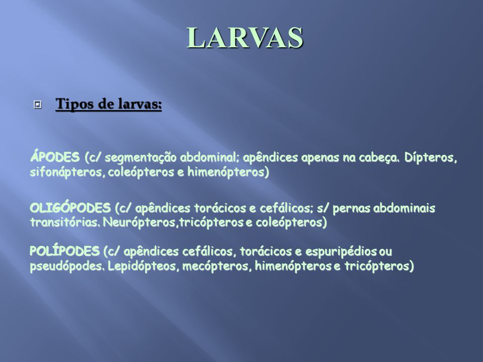  Tipos de larvas: LARVAS ÁPODES (c/ segmentação abdominal; apêndices apenas na cabeça. Dípteros, sifonápteros, coleópteros e himenópteros) OLIGÓPODES