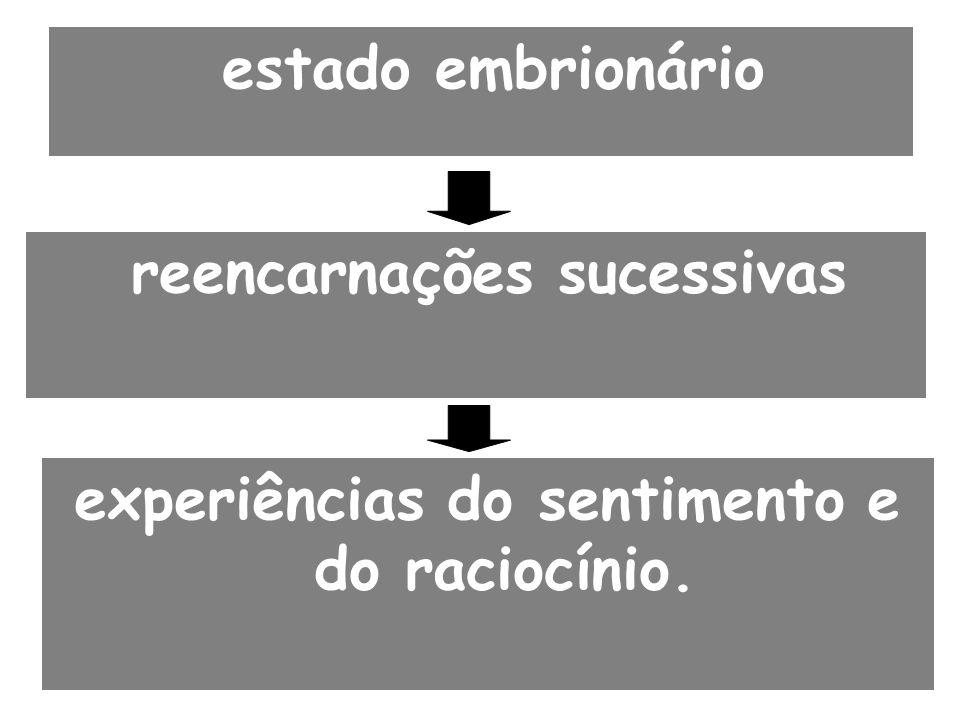 estado embrionário reencarnações sucessivas experiências do sentimento e do raciocínio.