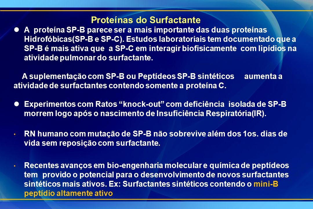lA proteína SP-B parece ser a mais importante das duas proteínas Hidrofóbicas(SP-B e SP-C). Estudos laboratoriais tem documentado que a SP-B é mais at