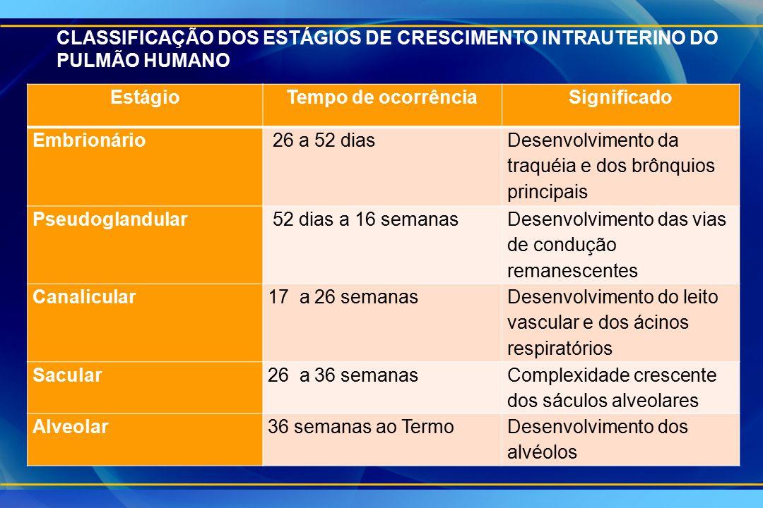 EstágioTempo de ocorrênciaSignificado Embrionário 26 a 52 dias Desenvolvimento da traquéia e dos brônquios principais Pseudoglandular 52 dias a 16 sem