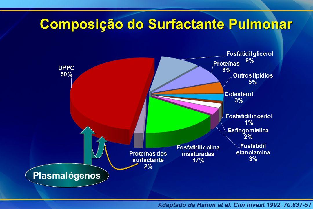 Metabolismo do Surfactante Célula tipo I Célula tipo II núcleo Corpúsculo lamelar Golgi Corpos multivesiculares exocitose Película Tenso Ativa( lipídio de camada única) mielina tubular SP-ASP-BSP-Cfosfolipídio hemácia Célula endotelial capilar R E rugoso Célula tipo I Célula endotelial capilar Zimmermann LJI et al, 2005 Célula tipo II hemácia Interface AR-LÍQUIDO endocitose