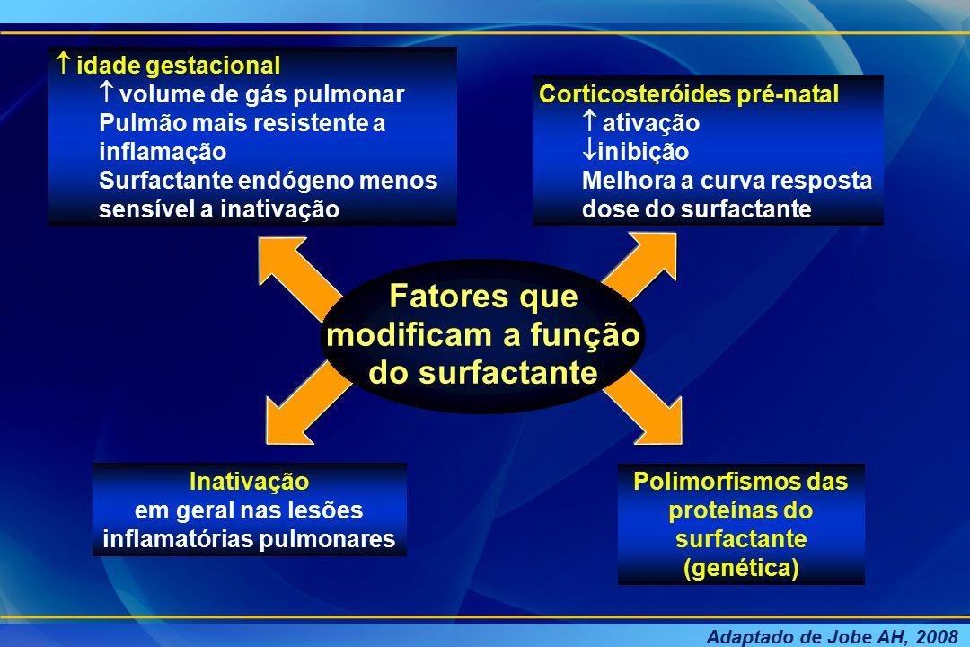 LESÃO PULMONAR AGUDA Integridade alveolar capilar Metabolismo alveolar do surfactante Pneumócitos tipo II Inflamação > permeabilidade Endotelial Epitelial Forma agregada anormal do surfactante Surfactante alterado Síntese Secreção Composição Migração de granulócitos, ativação de macrófagos, consumo PS-A Edema pulmonar Disfunção do surfactante Mediadores inflamatórios, oxidantes, proteases Mecânica pulmonar e anormalidades nas trocas gasosas  CRF  Complascencia  Shunt Adaptado de Zanelli AS & Kaufman D.