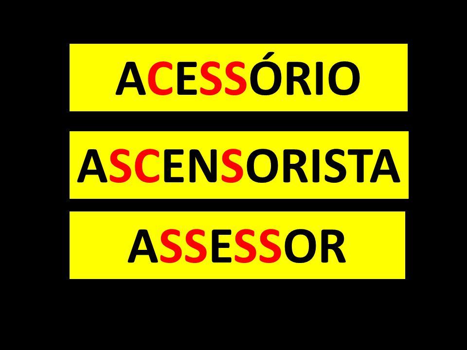 ACESSÓRIO ASSESSOR ASCENSORISTA