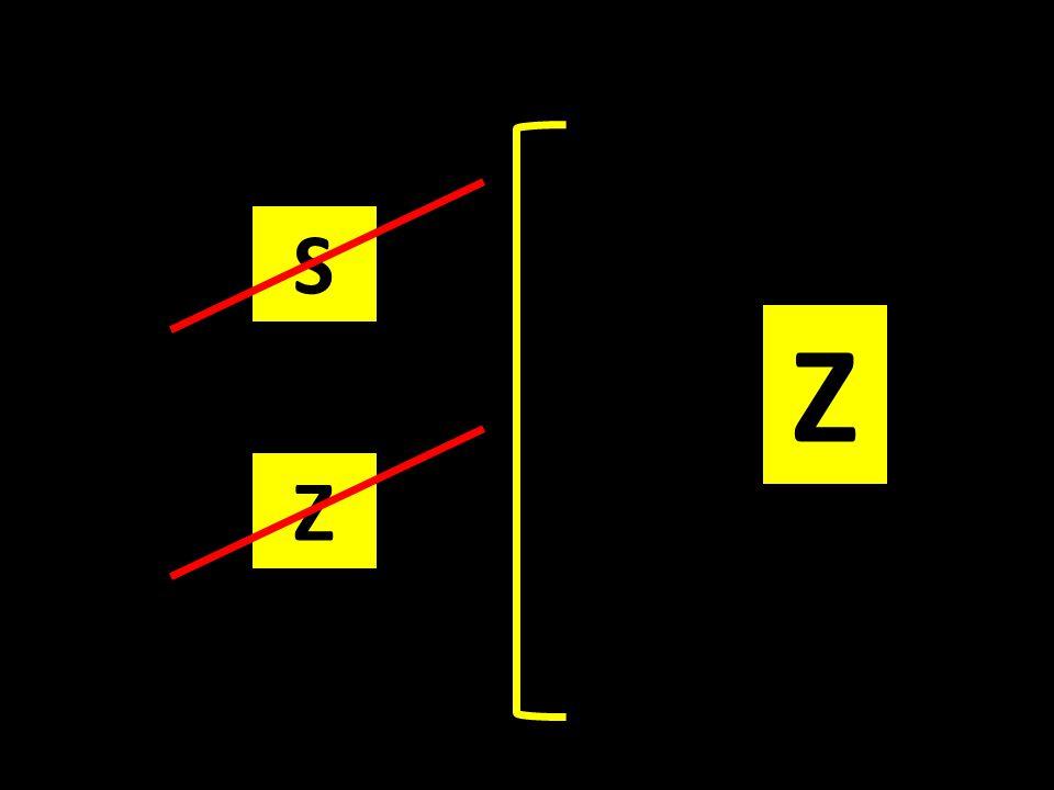 Z S Z