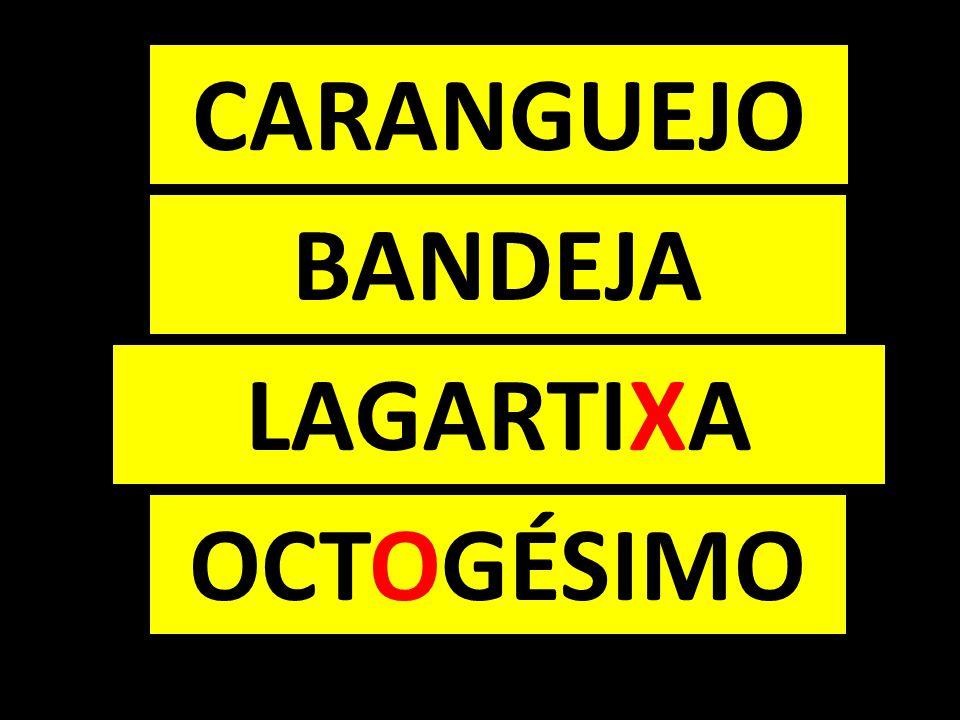 CARANGUEJO BANDEJA LAGARTIXA OCTOGÉSIMO