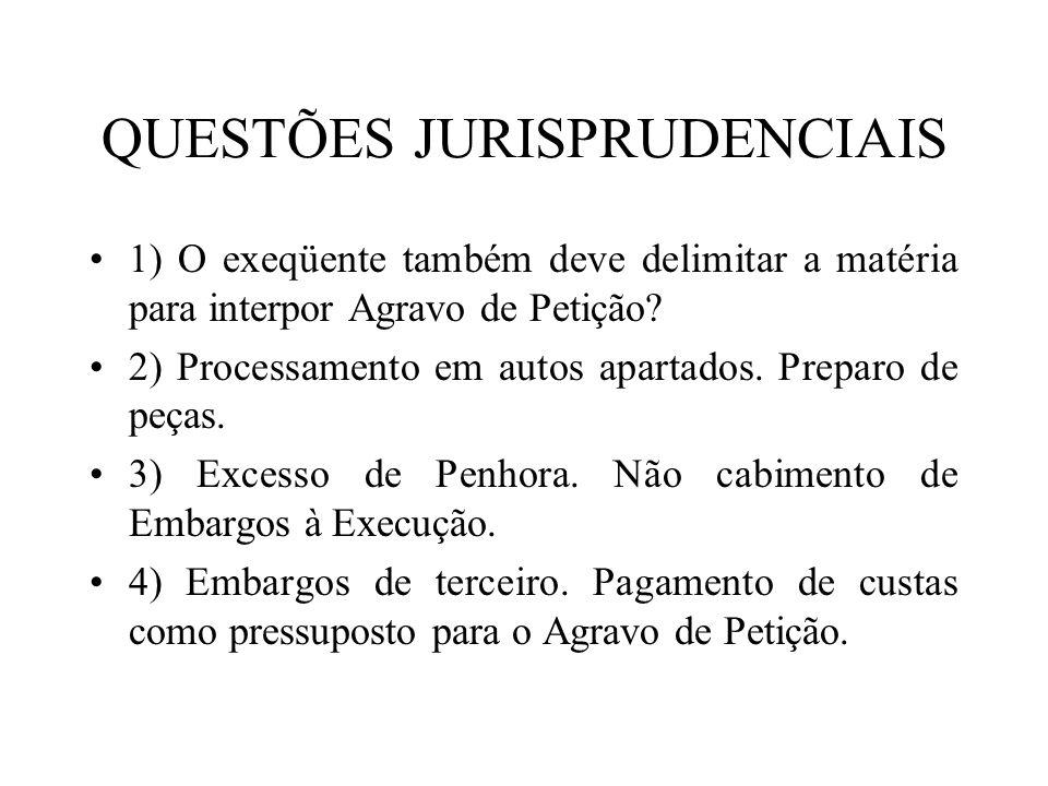 QUESTÕES JURISPRUDENCIAIS 1) O exeqüente também deve delimitar a matéria para interpor Agravo de Petição? 2) Processamento em autos apartados. Preparo
