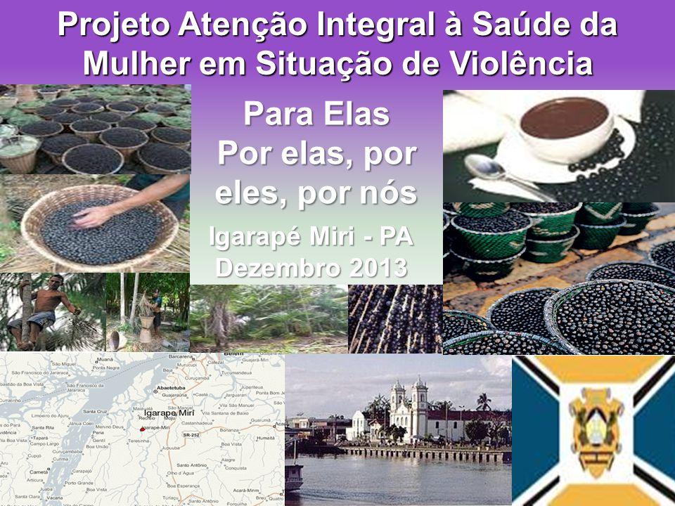 Projeto Atenção Integral à Saúde da Mulher em Situação de Violência Para Elas Por elas, por eles, por nós Igarapé Miri - PA Dezembro 2013
