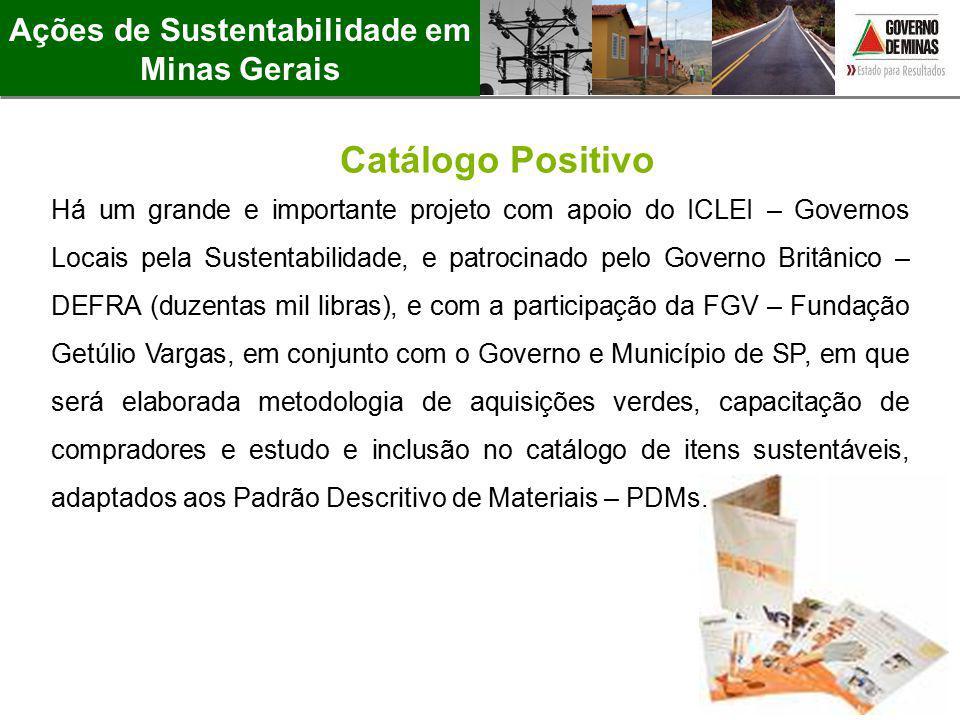Catálogo Positivo Ações de Sustentabilidade em Minas Gerais Há um grande e importante projeto com apoio do ICLEI – Governos Locais pela Sustentabilida