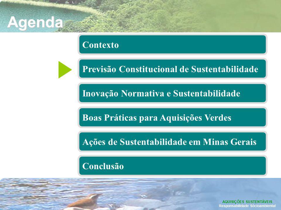 Previsão Constitucional da Sustentabilidade O art.