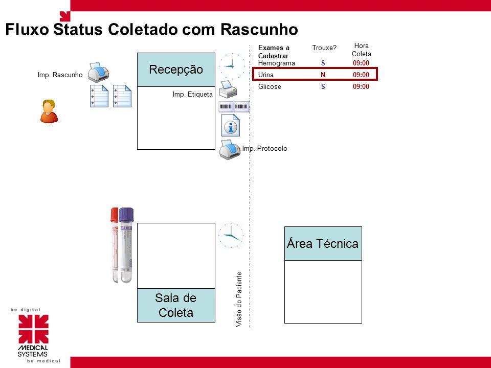 Área do Detalhe Aqui é indicado cada variável do procedimento a ser processado, o nome dos itens e o tamanho ocupado por eles são indicados na configurações de exames na tela principal do Mapa.