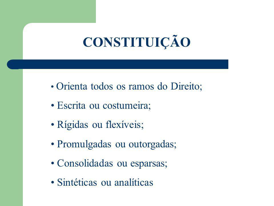 CONSTITUIÇÃO É norma de ordem superior que dispõe sobre a organização do Estado, sobre os direitos e garantias individuais e sobre outros assuntos considerados de especial relevância para uma determinada sociedade, em determinada época.