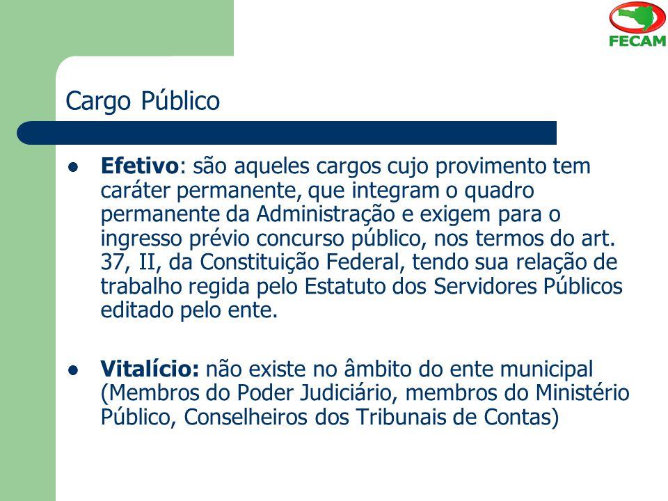 Cargo Público Efetivo: são aqueles cargos cujo provimento tem caráter permanente, que integram o quadro permanente da Administração e exigem para o in
