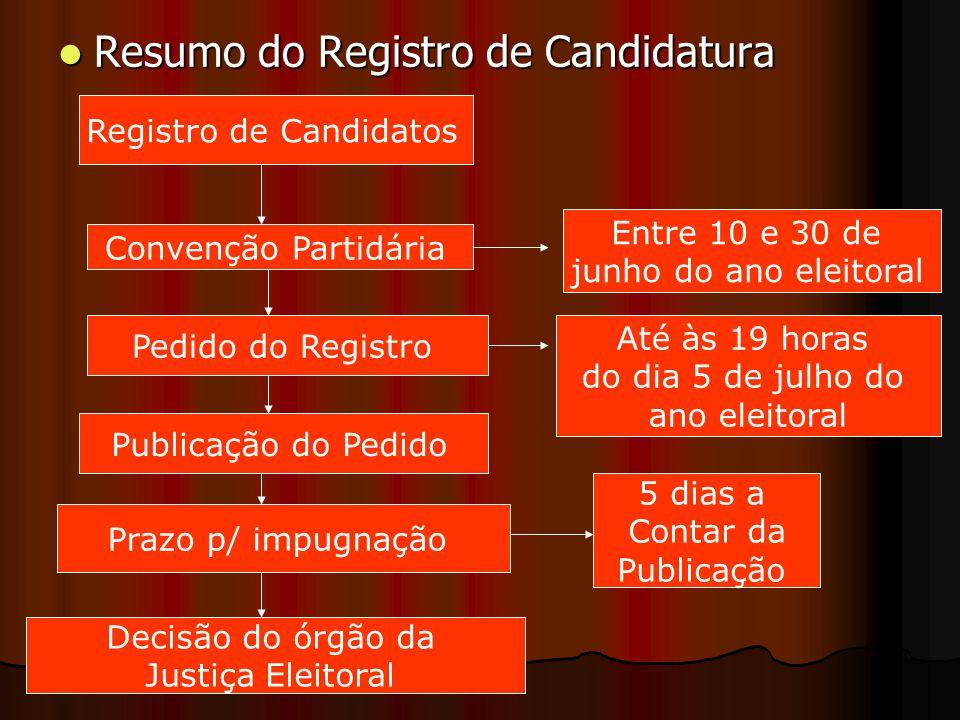 Resumo do Registro de Candidatura Resumo do Registro de Candidatura Registro de Candidatos Convenção Partidária Pedido do Registro Entre 10 e 30 de ju