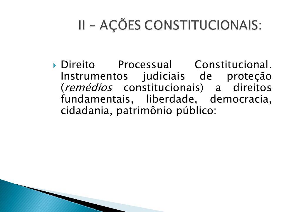  Direito Processual Constitucional.