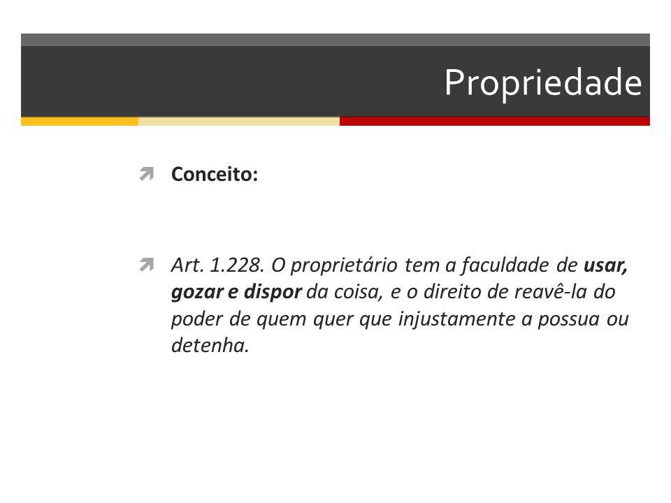 Propriedade  Conceito:  Art.1.228.