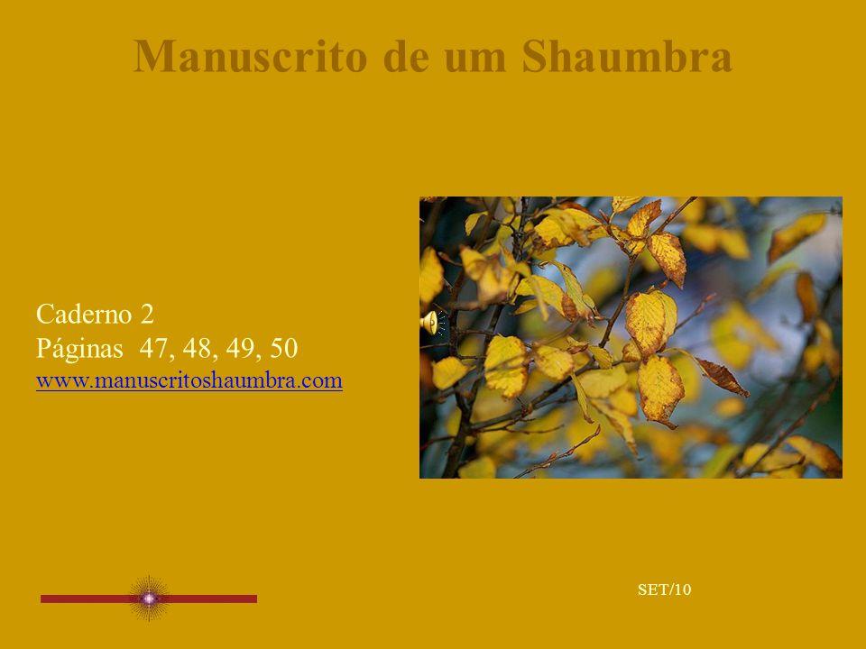 Manuscrito de um Shaumbra Caderno 2 Páginas 47, 48, 49, 50 www.manuscritoshaumbra.com SET/10