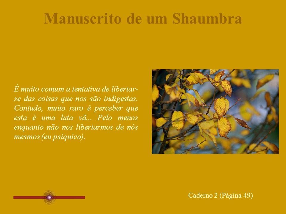 Manuscrito de um Shaumbra É muito comum a tentativa de libertar- se das coisas que nos são indigestas.
