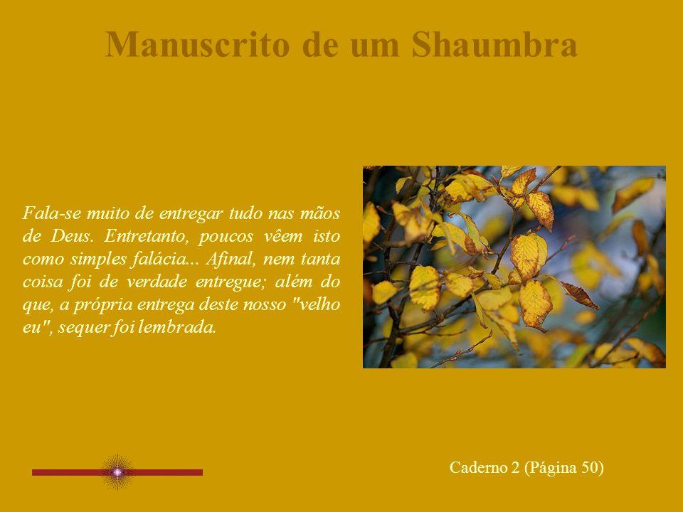 Manuscrito de um Shaumbra Fala-se muito de entregar tudo nas mãos de Deus.