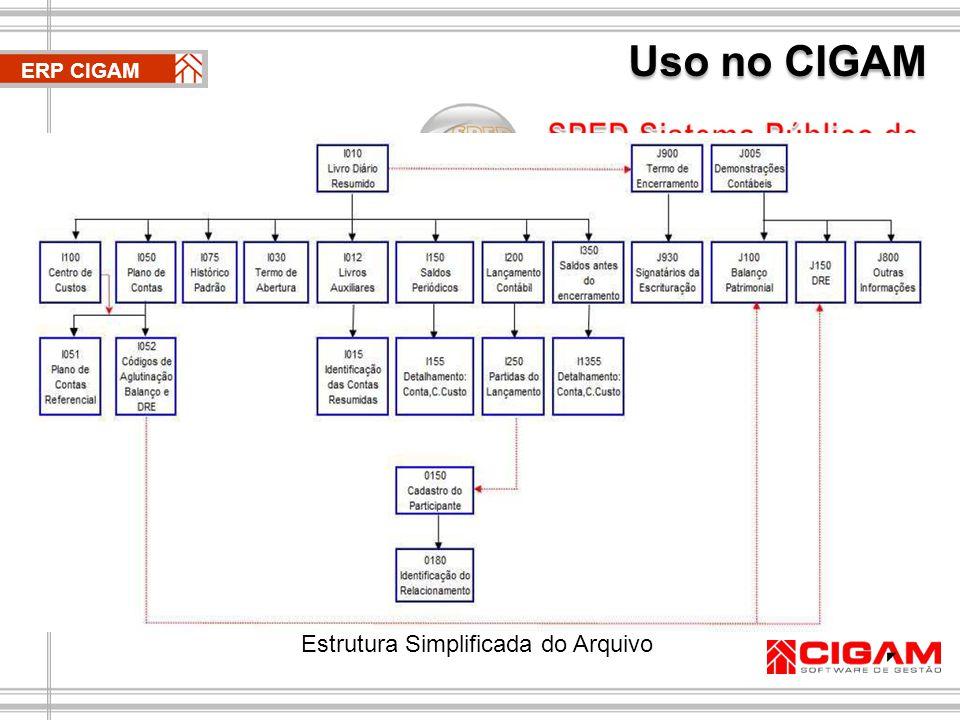 Uso no CIGAM O arquivo digital gerado pelo CIGAM Contábil estará estruturado de acordo com os padrões estabelecidos pela Receita Federal (Anexo único IN RFB 787) e pronto para ser submetido ao Programa Validador e Assinador (PVA), disponibilizado no portal SPED.