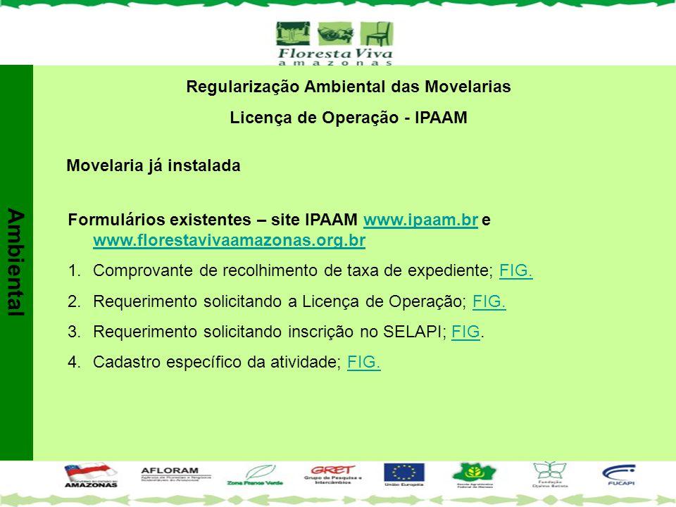 Regularização Ambiental das Movelarias Licença de Operação - IPAAM Movelaria já instalada Formulários existentes – site IPAAM www.ipaam.br e www.flore