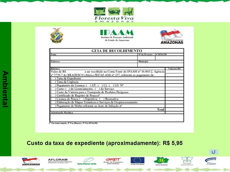 Custo da taxa de expediente (aproximadamente): R$ 5,95 Ambiental