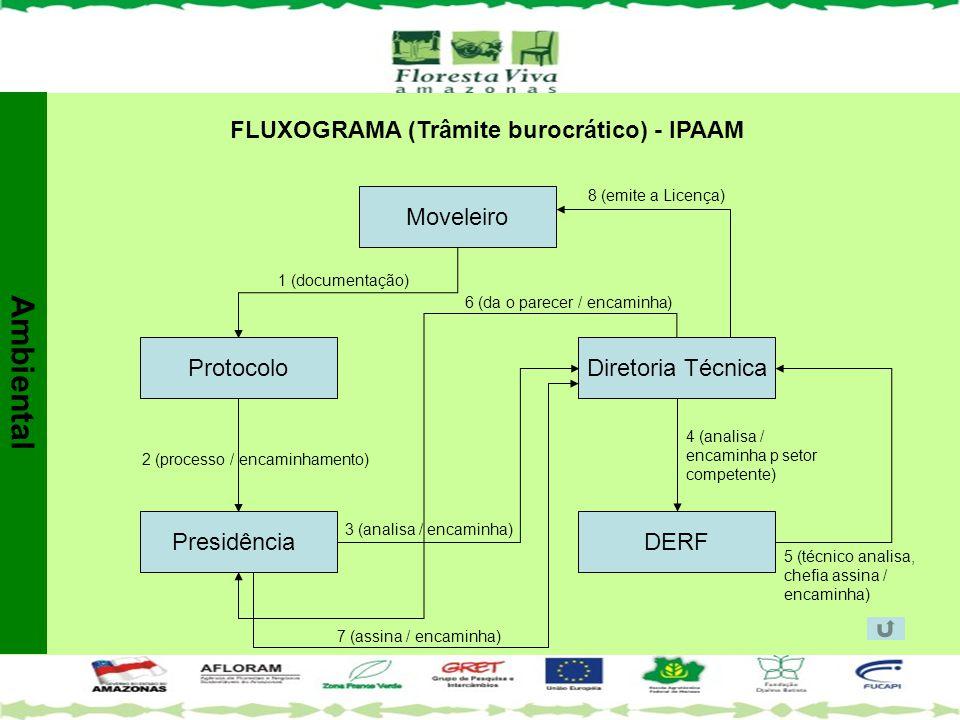 FLUXOGRAMA (Trâmite burocrático) - IPAAM Protocolo Presidência Diretoria Técnica DERF Moveleiro 1 (documentação) 2 (processo / encaminhamento) 3 (anal