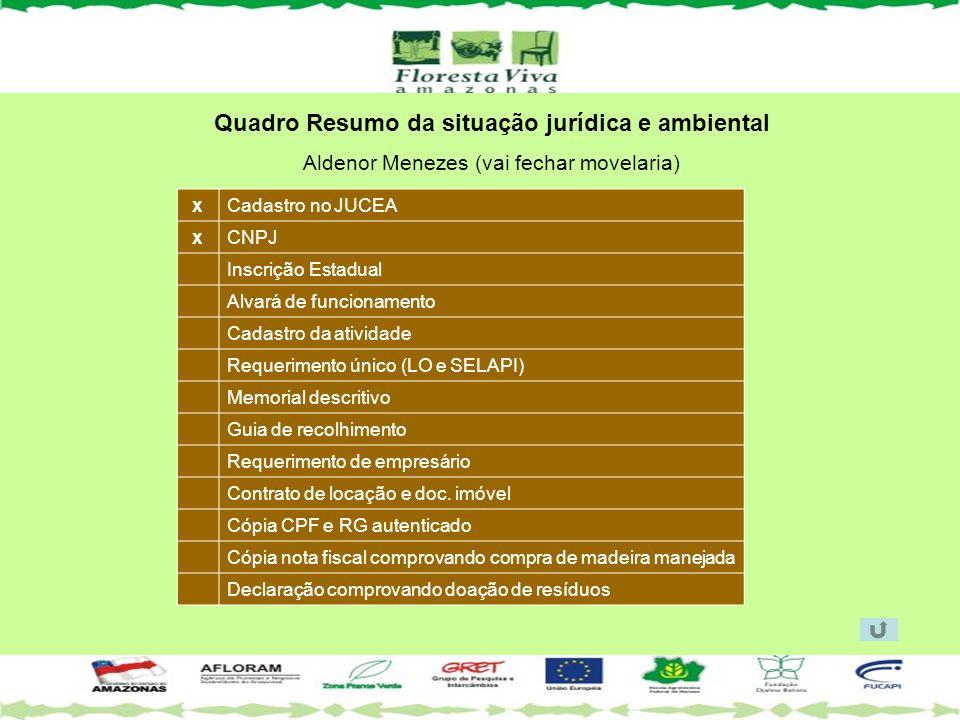 Quadro Resumo da situação jurídica e ambiental Aldenor Menezes (vai fechar movelaria) Cadastro no JUCEA CNPJ Inscrição Estadual Alvará de funcionament