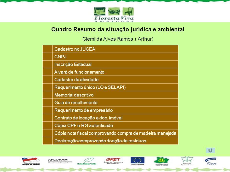 Quadro Resumo da situação jurídica e ambiental Clemilda Alves Ramos ( Arthur) Cadastro no JUCEA CNPJ Inscrição Estadual Alvará de funcionamento Cadast