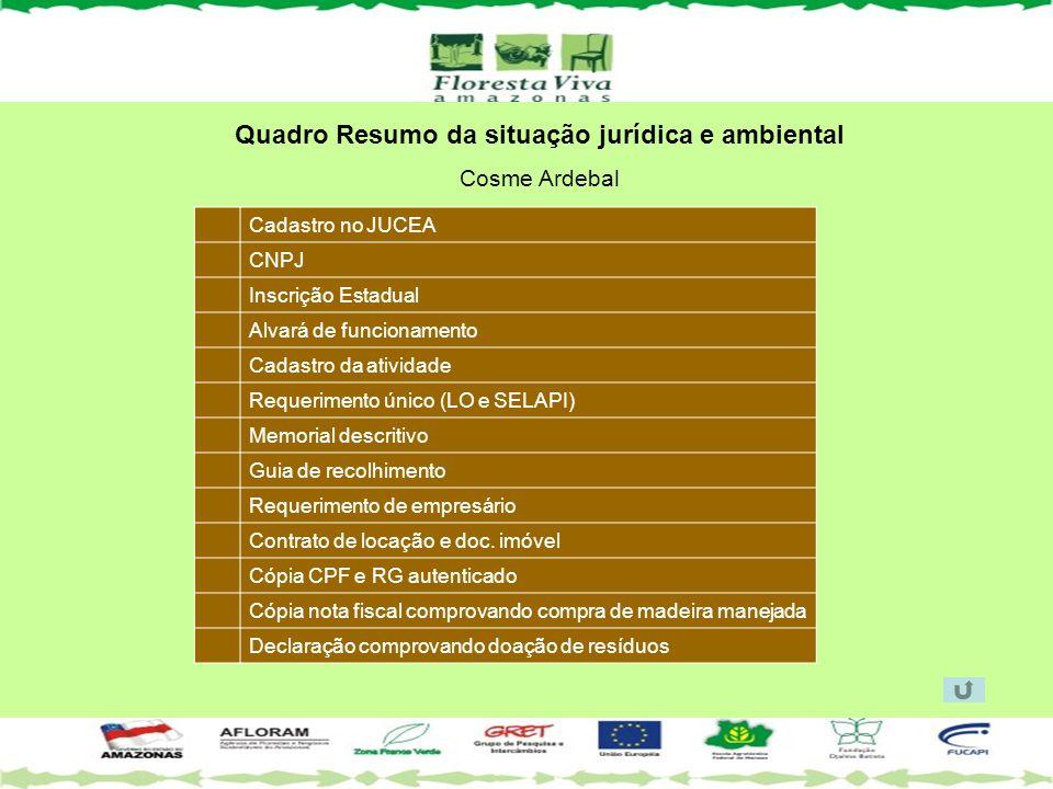 Quadro Resumo da situação jurídica e ambiental Cosme Ardebal Cadastro no JUCEA CNPJ Inscrição Estadual Alvará de funcionamento Cadastro da atividade R