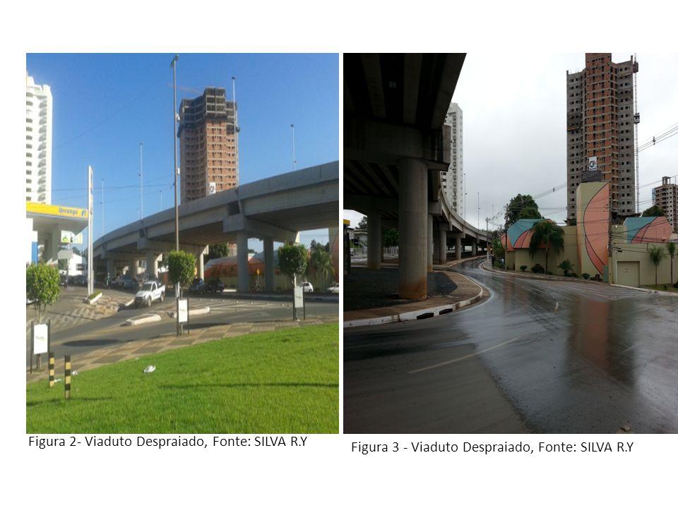 Figura 2- Viaduto Despraiado, Fonte: SILVA R.Y Figura 3 - Viaduto Despraiado, Fonte: SILVA R.Y