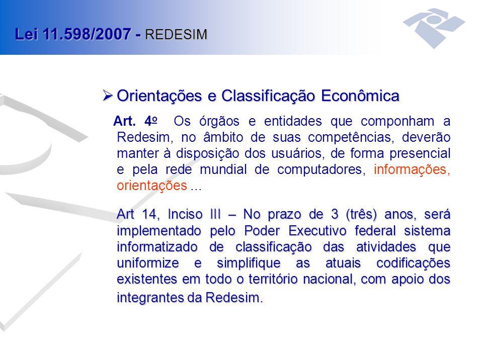 Orientações e Classificação Econômica Art.